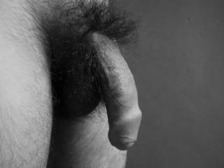My Natural Hairy Dick In Black & White!