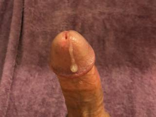 Cock covered with pre cum makes great lube