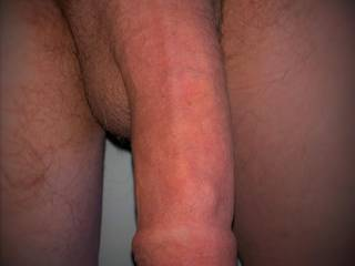 well hung veiny uncut cock for you to play with ;)