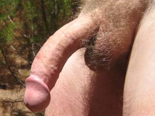 What a beautiful cock!  Super bonus that it is outside, in the sun, love to put my lips on that!