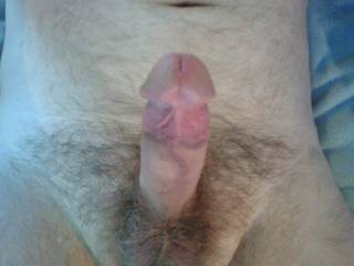 Dreaming of a Zoig! lady licking under my cock head, resting her breasts on my thighs and taking my cock into her mouth. Anyone want to make my dream cum true?