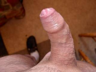 Great looking cock with a perfect foreskin!