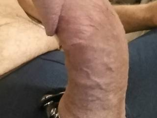 His cock hard and ready for me to bounce on. Anyone else?