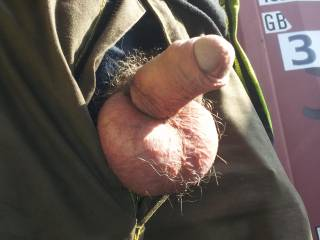Love seeing a man's hard cock jetting out of his pants. Also luv hairy cocks.