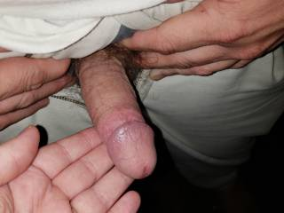 Hubby\'s flaccid cock before I started stroking it outside. 😍