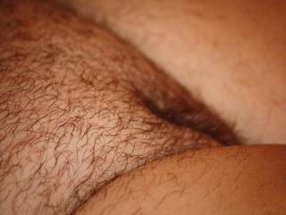 perfect hairy pussy for my cock !!!!!!