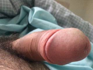 Which is better, hairy or shaved?