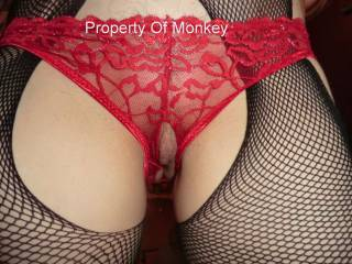 New horny panties open crotch fishnets to match, lovely easy access and delicious view, don\'t you just love it ?
