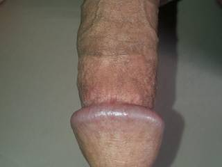 Lifted  my  dick  