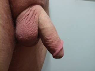 Upon request. Here is my Limp Cock everyone, I had no idea you 