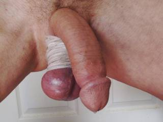 My cock relaxed a little and the precum started oozing.