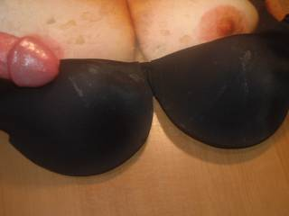 About to stroke my throbbing hard cock and shoot my 7th warm thick cum load on Sweet T\'s tits and GF\'s black bra. Her request in exchange for some cock tribute pics! You can see the dried cum from my last 6 cum loads!