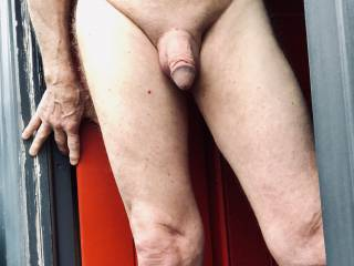 Love flashing my cock at the neighbor every morning.
