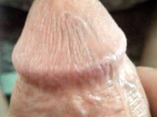 Thick shaft and head waiting for me to suck him hard And ride him like a bucking bull? Anyone wanna sit on his Face? Mrs.