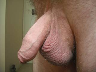 Best cock on the site by far, in my view