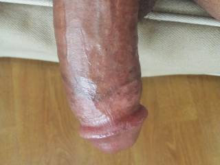 Cock asking for a suck....