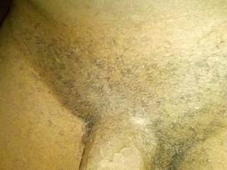 Nice and hairy