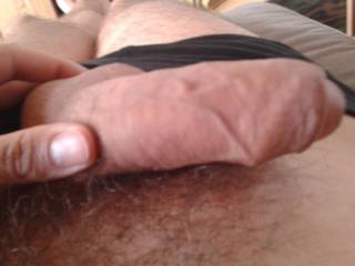 just pulled out of my pants. what do you want to do? wanne see me jerking and how hard its growing? or do you just wanne watch this FAT and thick cock for a while? start to lick very slow? watch all those vein pumping and pulsating?