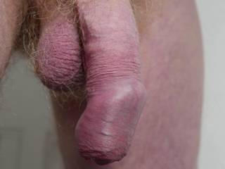 My flaccid mature cock for all you flaccid mature cock lovers