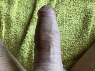 My penis resting after work