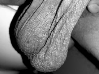 My big nuts in Black and white