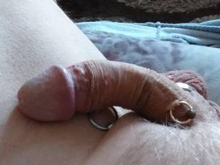 My curved cock