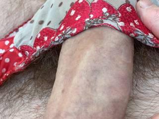 Sexy sheer panties x