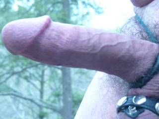 a real close up of my cock with various rings! Is it too close up?