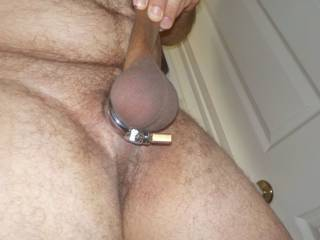 A new cock ring