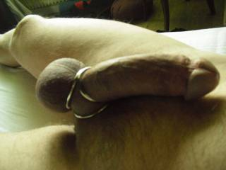 the pleasure of a triple cockring: hard and long erection and big, strong balls!