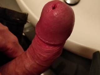 My big veiny cock, what do you think? Would you suck my mushroom cock head?