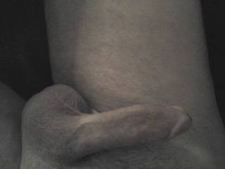Another shot of his beautiful hardening dick, we are naked, chatting with Zoig friends.