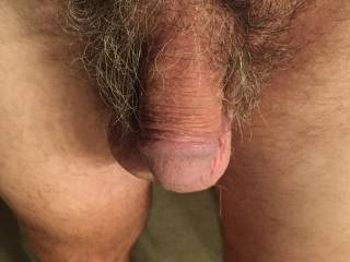 More wild and hairy cock