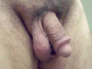 Relaxed cock, waiting