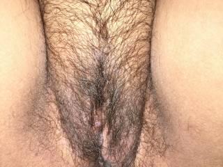 Harley's hairy pussy
