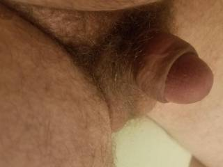 A rare shot of my tiny little dick out of it's cage. Proof of why it belongs locked up!