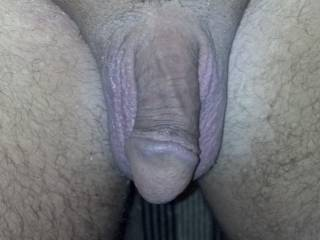 2 new cock pics. What do you think about my  neatly trimmed pubic hair?