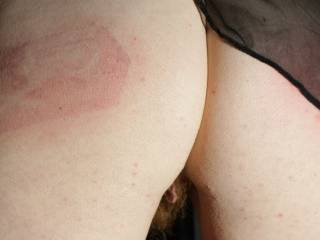 Nice paddle marks. I wish I had been there to hear you squeal when the paddle bit your tender ass.
