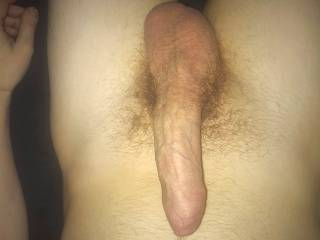My uncut and hairy hard penis