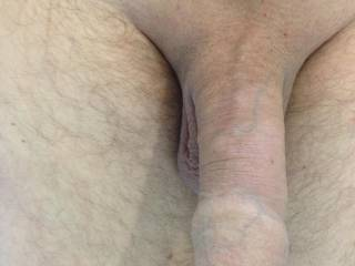 My shaved dick