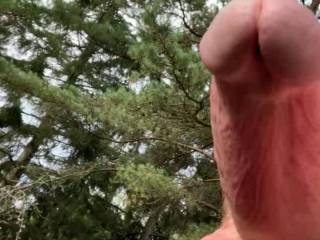 felt horny, had to get the cock out and jerk a little