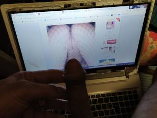 Cock looking his favorit Pussy on net