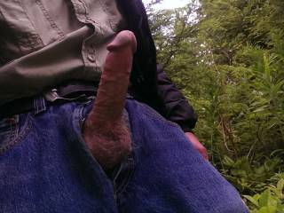 hes out and ready! he probably smells the wet spot on my pantyhose crotch as im hiding behind a bush watching!