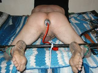 my male slave hole plugged with inflatable butt plug