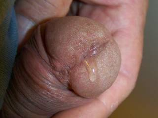 Just a little precum for someone to lick off