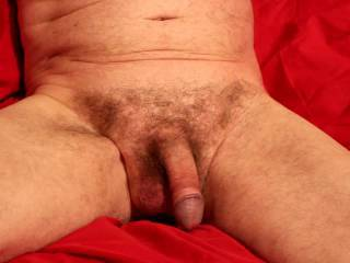 A close examination of my flaccid dick with foreskin forward and retracted.