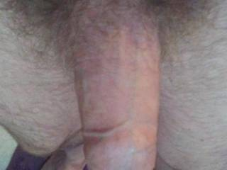 Hey wants to be in a nice mouth