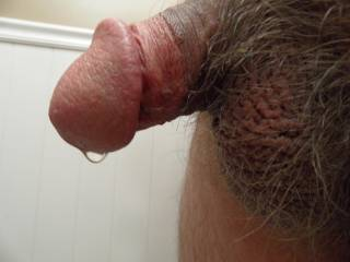 Nice and thick. That drop of precum is really hot.