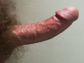 One day I got really horny at work and decided to show you all how hard it made my cock, could have easily got caught with my pants down, but that just made it even more exciting.