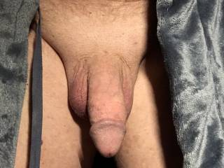 Fat cock for your approval.
